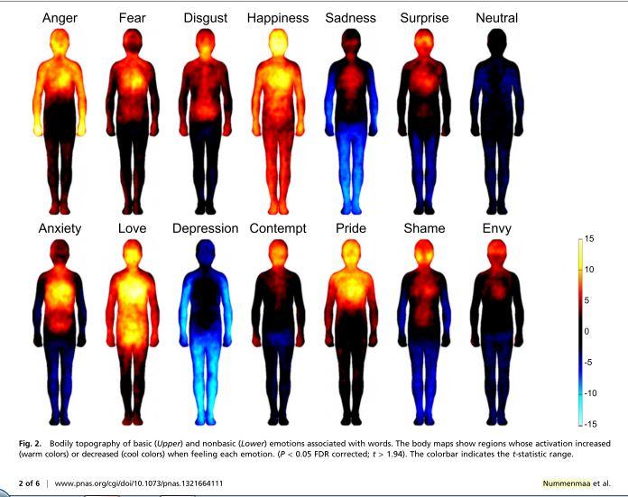 Nummenmaa et al_Bodily map of emotion