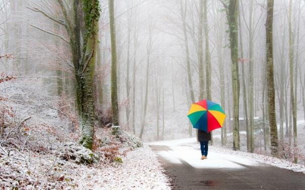 park_person_umbrella_snow_road_fog_walk_46209_1920x1200